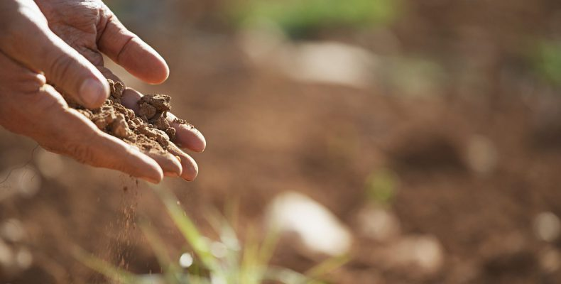 Garden soil is made up of sand, silt, and clay