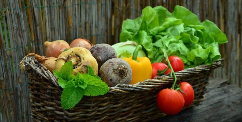 Vegetables From the Backyard Garden