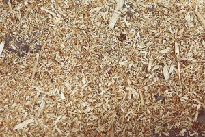 Wood chips for mulch in backyard garden