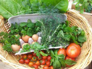 Vegetables, fruits, and herbs basket