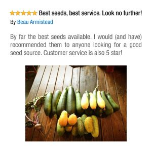 50 Varieties Heirloom Survival Seeds Pack Review
