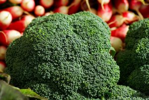 Broccoli head with tight floret buds.