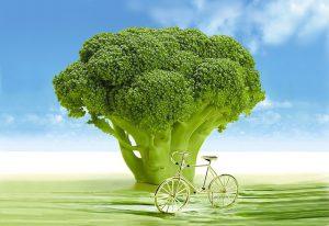 Broccoli tree.