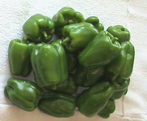 Bell peppers from Jim's garden.