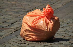 Garbage bag full of throw-away vegetable parts.