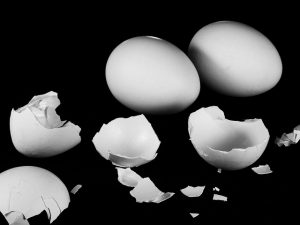 Eggshells to recycle.
