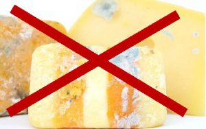 Cheese and other dairy products go are trash and not for compost.