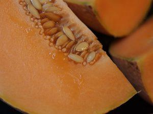 Cantaloupe seeds