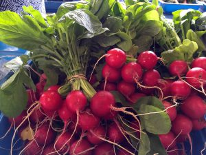 Radishes with leaves.