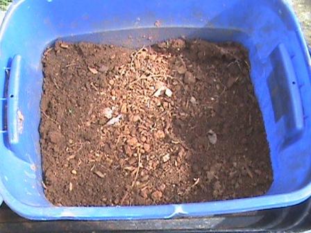 Random garden soil samples in my tote bin.