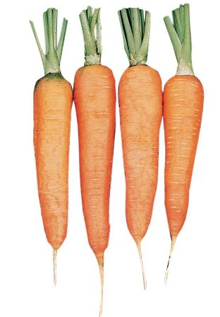 Touchon carrots