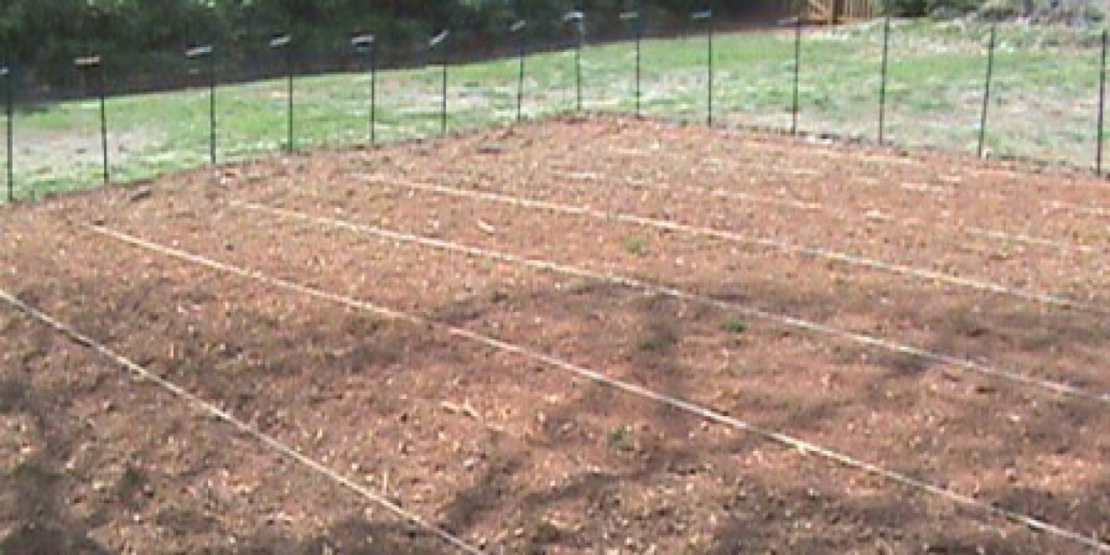 "Chapter 4 ""Tilled, Lined, Trellised, And Ready To Go"""