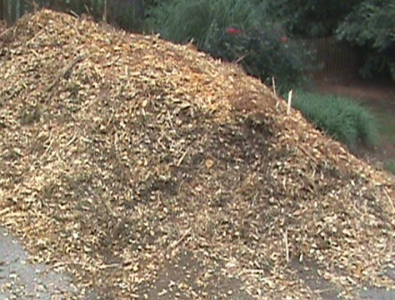 A pile of wood chips in my driveway.