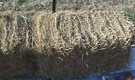 Place straw bales cut side up.