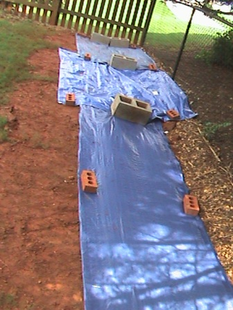 Tarps over the trench - waiting for the next hard rain.