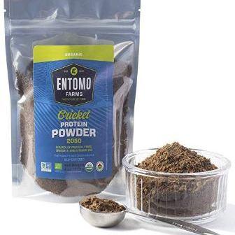 Cricket Protein Powder Crickets