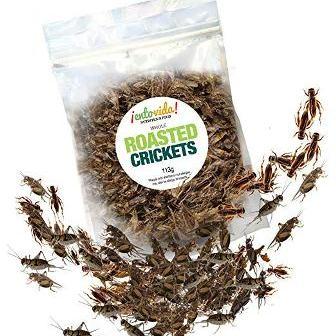 Roasted 1/2 lb Crickets