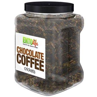 Chocolate Coffee 1 lb Crickets