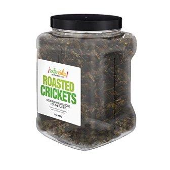 Roasted 1 lb Crickets