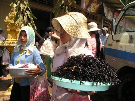 Thailand street market - tarantulas to eat.