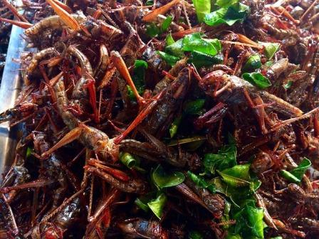 Thailand street market - grasshopper stir fry