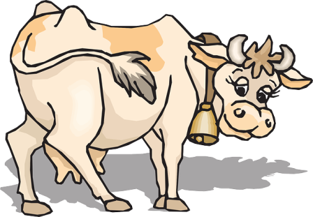 Jed's cow, Bessie.