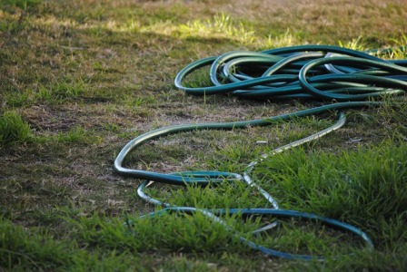 Is treating the lawn once a year enough?