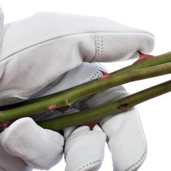 Professional Rose Pruning Garden Gloves