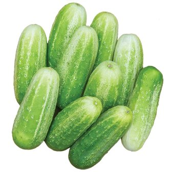 Picklebush Cucumbers