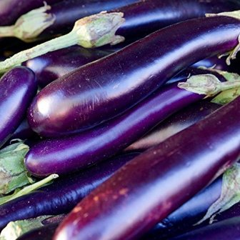 Long Purple Organic Eggplant
