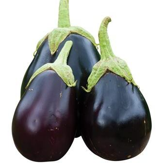 Early Midnight Eggplant