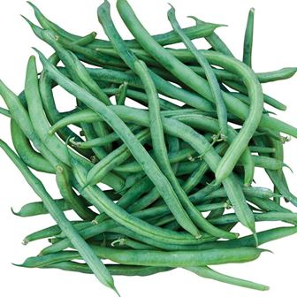 Pole Beans - Kentucky Blue