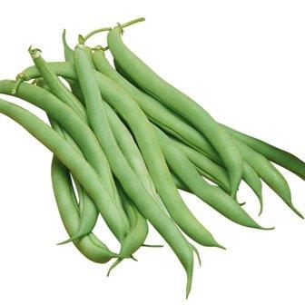 Half-Runner Beans - White