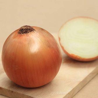 Onion - Candy Hybrid