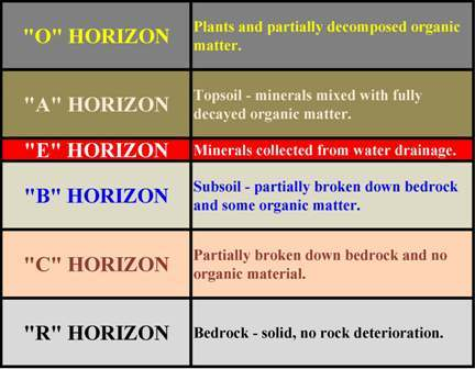 Soil analysis - soil horizons.