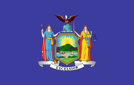 New York state flag.