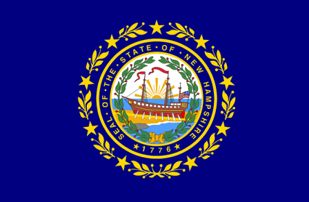 New Hampshire state flag.