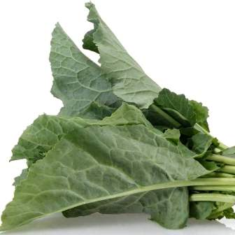 Collard greens freshly picked.