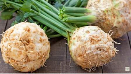 Harvested celeriac