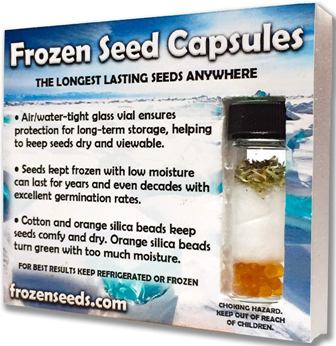 Pâtisson Strie Melange squash seeds by Frozen Seed Capsules
