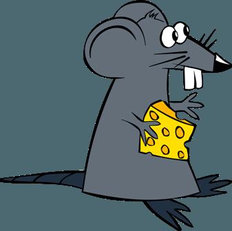 An achocha mouse?