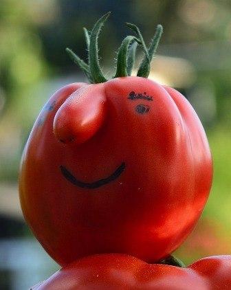 A happy mutant tomato.