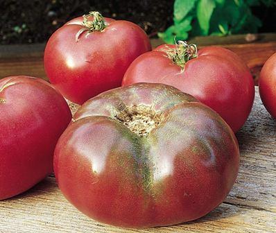 Burpee Cherokee Purple tomato seeds.