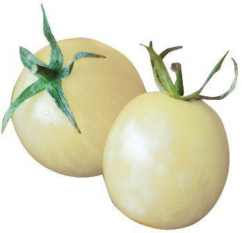 Burpee Italian Ice Tomato Seeds.