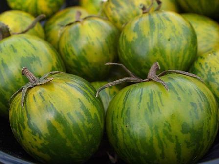 Stonysoil Seed Company Green Zebra tomato seeds.