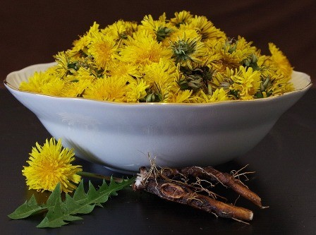 Dandelions are some great edible weeds.