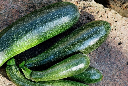 Zucchini to be freeze dried.