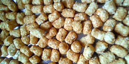 Ore-Ida Tater Tots after they are freeze dried.