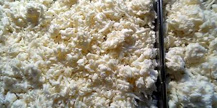 Freeze dried mozzarella cheese that completed the freeze drying cycle.